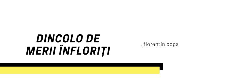 Florentin Popa – dincolo de merii înfloriți (poem)