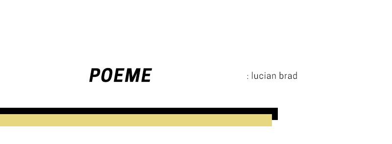 Poeme – Lucian Brad